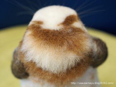 羊毛フエルト12
