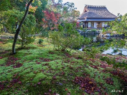 奈良 依水園・吉城園