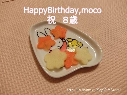 モコ誕生日