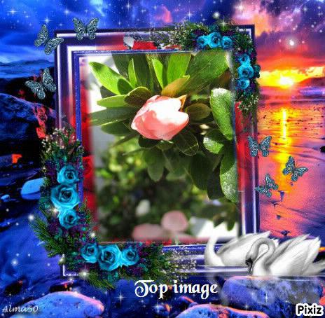 pixiz_543226f1b4411