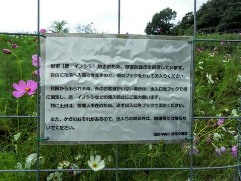 [画像:60f25148-s.jpg]