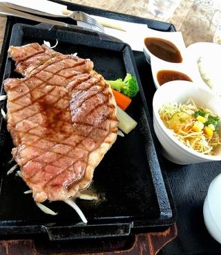 土佐牛のすき焼きとステーキ
