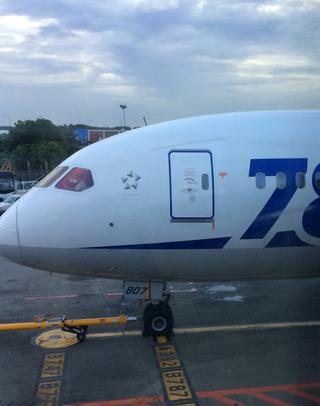 海外赴任後2度目の帰省 - 全日空「NH836」便--ANA BUSINESS CRADLE(787型機)」のビジネスクラス