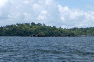 南国の熱帯雨林が手付かずで残る「ウビン島(乌敏岛)Pulau Ubin @シンガポール