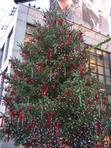 渋谷・パルコ前の大きなクリスマスツリー