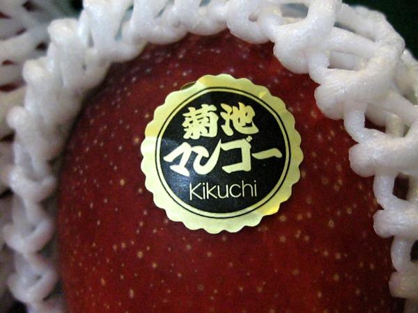 クマモトの高級完熟「キクチマンゴー」を食す!