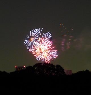 2013 神宮外苑花火大会