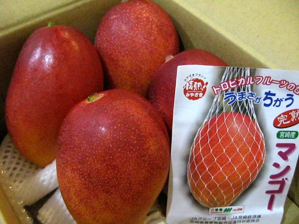 宮崎県産完熟マンゴー「太陽のタマゴ」を食す!