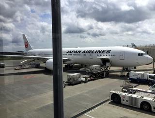 海外赴任後8度目の帰国 --日本航空「JL725」便--SKY SUITE 777(スカイスイート777)」