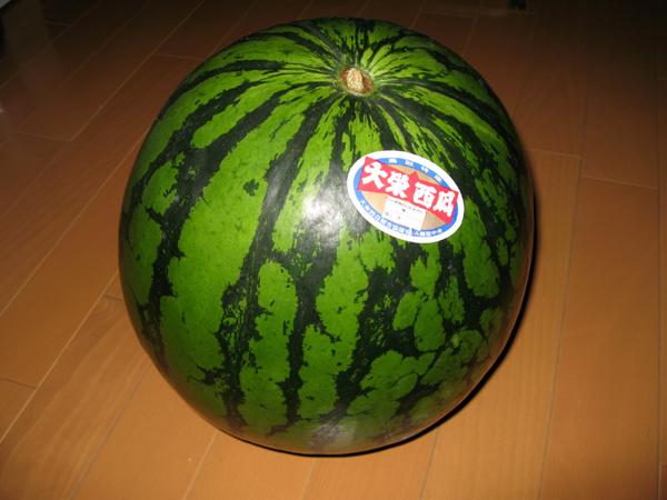 鳥取県のうまい大栄西瓜(だいえいすいか)を食す!