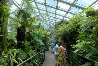 世界最大の蘭園「ナショナル・オーキッド・ガーデン」 @シンガポール