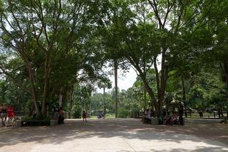シンガポール植物園-ボタニックガーデン(Singapore Botanic Garden) @シンガポール