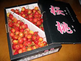 山形・江口農園の「さくらんぼ(桜桃)」