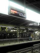 793e8ca8.JPG