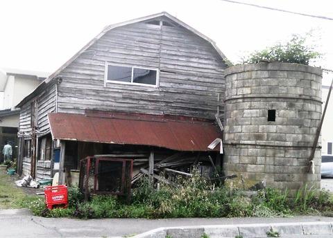 台風で屋根がとんで,木のある気になるサイロでした