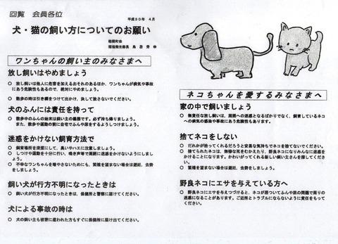 img150 犬・猫の飼い方 A