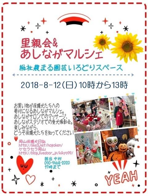 2018-8-12-ashinaga-pos