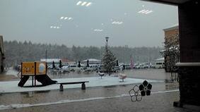 フォレスト 雪景色