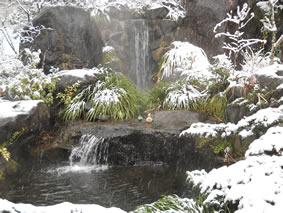 温泉のような滝