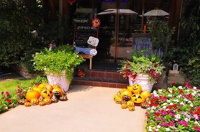 かぼちゃがお出迎え