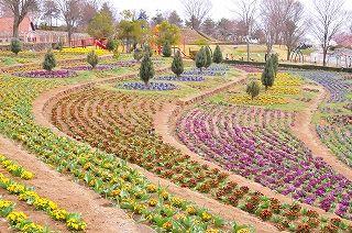 パノラマ花壇