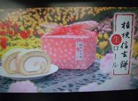 桔梗信玄餅生ロールCM新