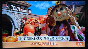 NHK28