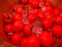 真っ赤なトマト!