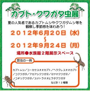 カブト・クワガタ虫展
