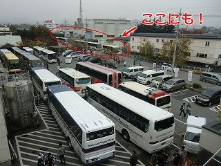 s-バスバス