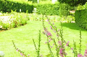 ポモドーロのお庭