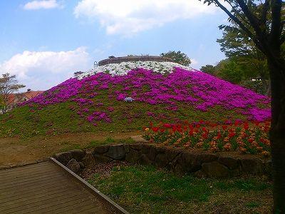 富士山花壇