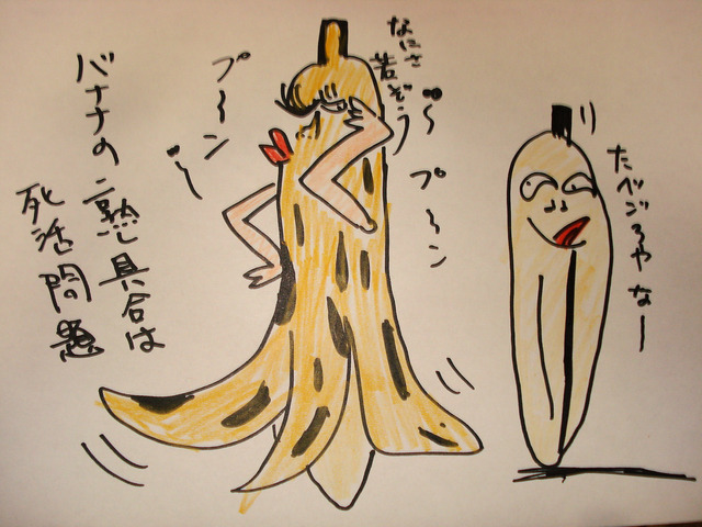 バナナの 熟し具合は 死活問題 (2)