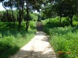学生会館への道3