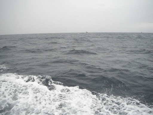 20120122-05