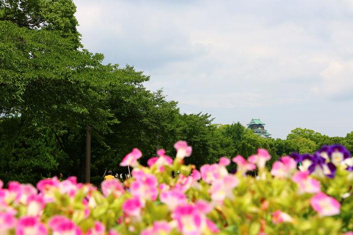 大阪・中央区・大阪城界隈20150620-2
