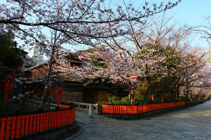京都・東山区・祇園白川20150331-4
