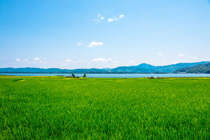 京都・与謝郡与謝野町・字男山地区20170720-2