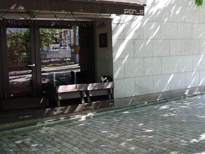 京都祇園界隈1-3
