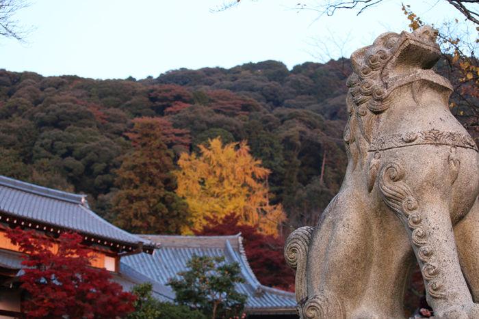 京都・東山区・清水寺20131124-1-2