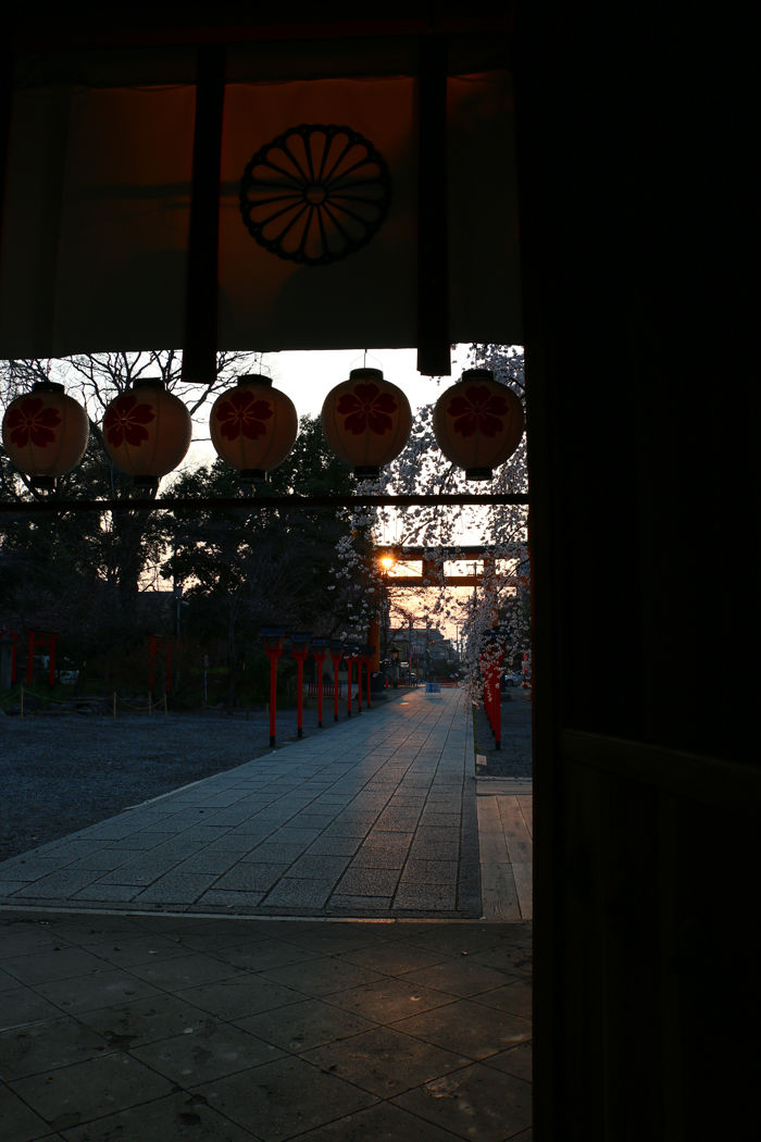 京都・北区・平野神社20160330-7