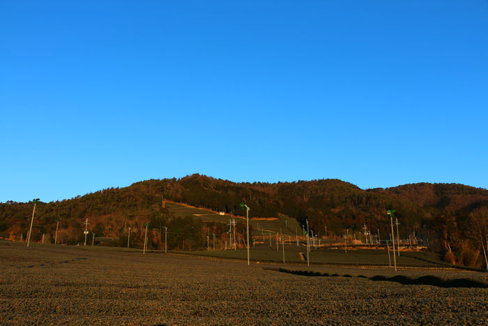 京都・相楽郡和束町・大字白栖地区20160225-10