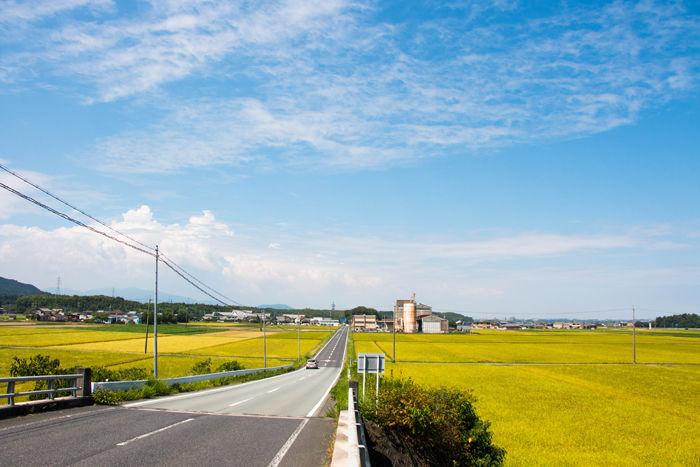 三重・松阪市・嬉野下之庄町地区20160820-1