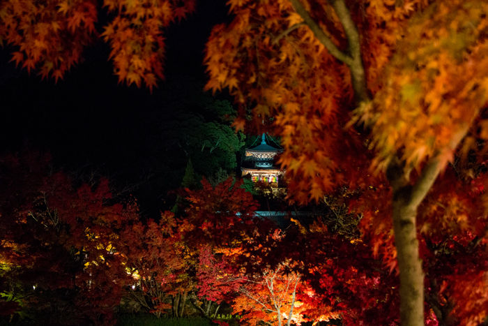 京都・左京区・禅林寺【永観堂】20161116-6