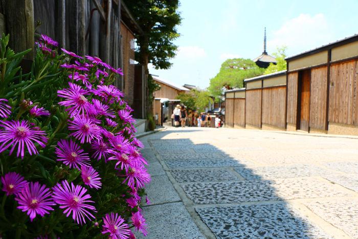 京都・東山区・八坂の塔20150624-3