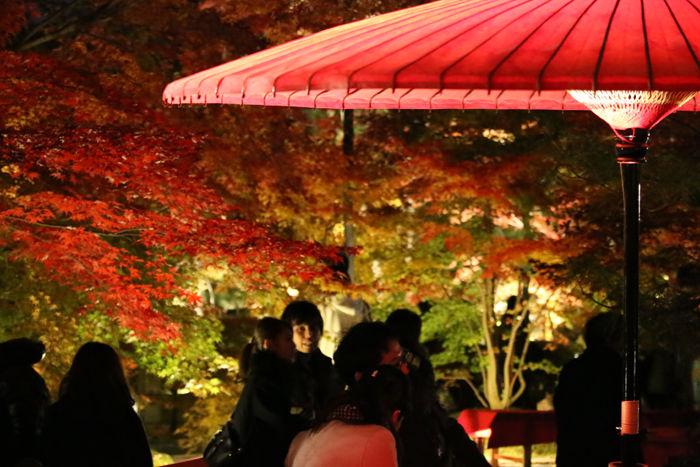 京都・左京区・禅林寺【永観堂】20131123-8