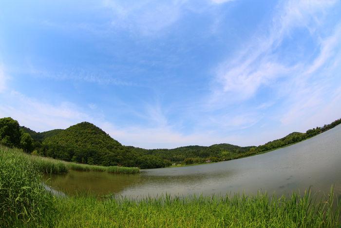 京都・右京区・【魚眼風景】広沢池界隈20150527-6