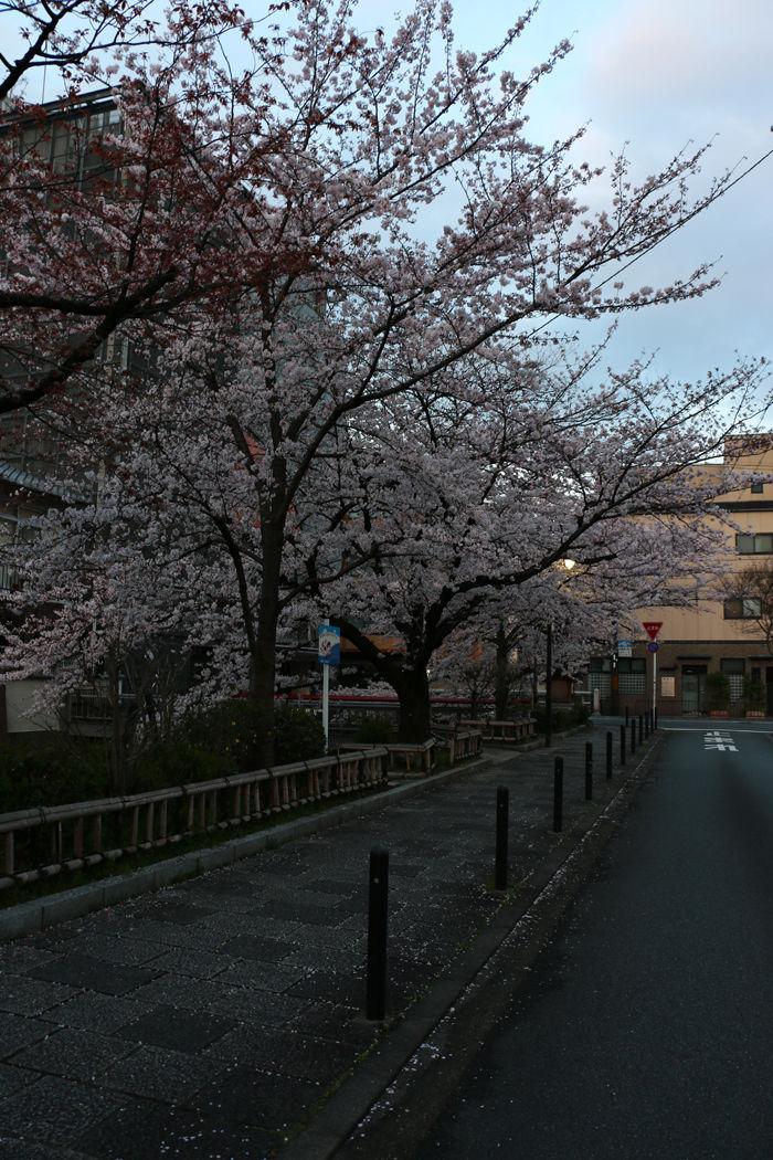 京都・東山区・三吉町地区20160402-1