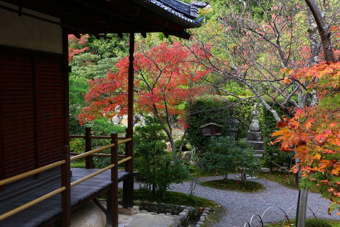 京都・北区・等持院20151121-4