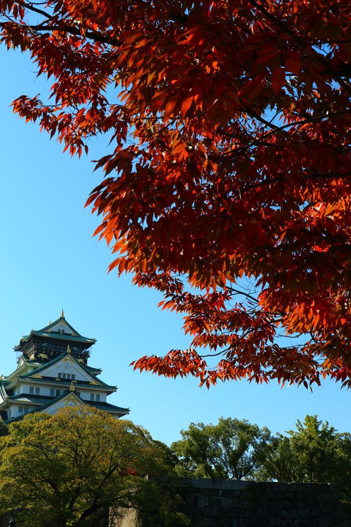 大阪・中央区・大阪城界隈20151104-1